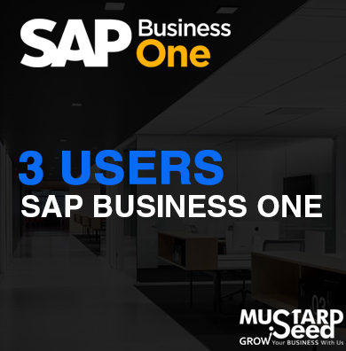 SAPB1 3-User Package