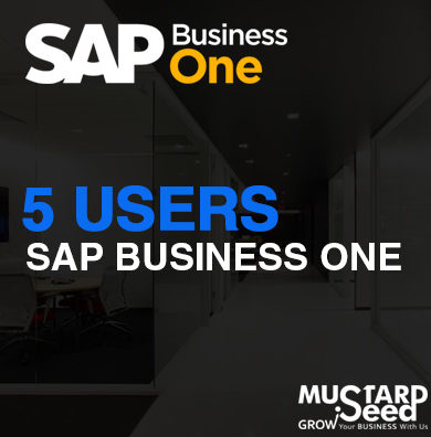 SAP B1 5 User Package