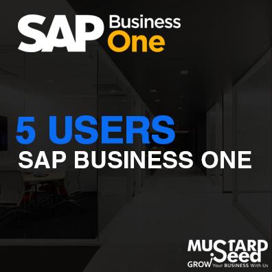 SAP B1 5 User Package
