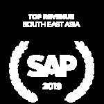 SAP(2019)002